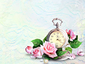 Image Roses Clock Pocket watch Pink color Flowers