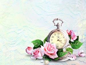 桌面壁纸,,玫瑰,時鐘,怀表,粉红色,花卉