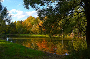 Pictures Russia Autumn Forests Lake Branches Moscow region Nature