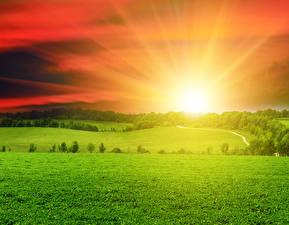 Hintergrundbilder Landschaftsfotografie Sonnenaufgänge und Sonnenuntergänge Acker Himmel Gras Sonne Natur