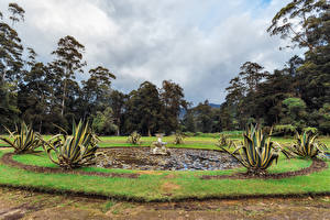 Hintergrundbilder Sri Lanka Park Springbrunnen Bäume Queen Victoria Park Natur