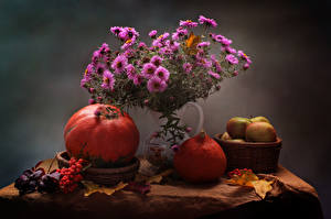 Hintergrundbilder Stillleben Astern Kürbisse Mehlbeeren Weidenkorb Vase Blumen Lebensmittel