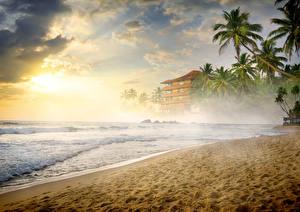 Bilder Tropen Küste Wasserwelle Nebel Sand Palmen Strand Natur
