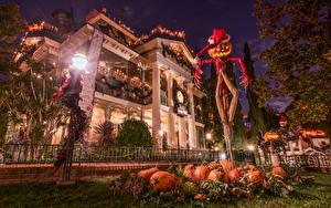Image USA Parks Disneyland Building Halloween Pumpkin California Anaheim Night time Street lights Winter hat Scarecrow Cities