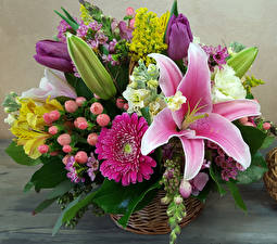 Bilder Sträuße Lilien Gerbera Blumen
