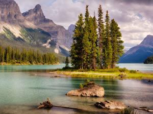 Fotos Kanada Park Gebirge See Steine Landschaftsfotografie Jasper park Bäume