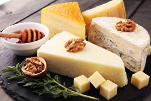 Fotos Käse Nussfrüchte Walnuss