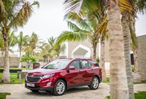 Bilder Chevrolet Rot Metallisch 2017 Equinox Premier Autos