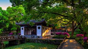 壁纸、、中華人民共和国、公園、パゴダ、Wuxi Jiangsu、自然
