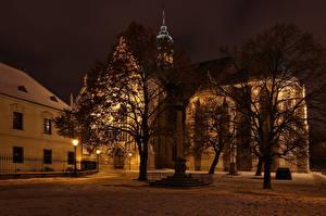 Wallpapers Czech Republic Building Temples Night Trees Street lights Brno Cities