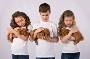Photo Dogs Colored background Three 3 Boys Little girls Puppy Children