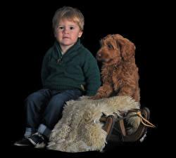 Pictures Dog Black background Boys Sitting Glance Labradoodle Children Animals