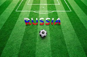Fotos Fußball Englisch Ball Rasen Wort sportliches