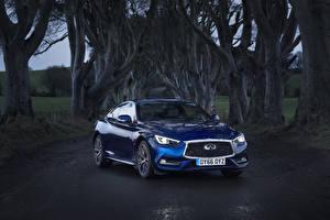 Fotos Infiniti Blau Metallisch 2016 Q60 2.0t Autos