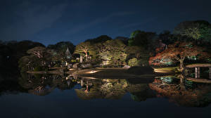 Wallpaper Japan Tokyo Parks Pond Trees Night time Reflection Nature