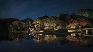 Fondos de Pantalla Japón Tokio Parque Estanque árboles Noche Reflejo Naturaleza