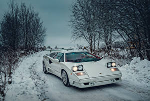 Fotos Lamborghini Antik Weiß 1988-1990 Countach 25 Anniversary with option Rear Wing Worldwide Autos