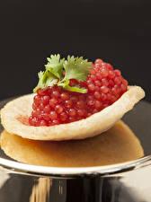 Fotos Meeresfrüchte Caviar Rot Kartoffelchips
