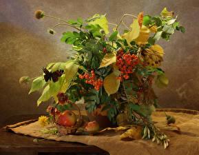 Fotos Stillleben Sträuße Mehlbeeren Äpfel Schmetterlinge Blatt Weidenkorb Natur