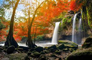 Sfondi desktop Thailandia Parco Cascata Pietre Alberi Il dirupo I muschi Heo Suwat Waterfall Khao Yai National Park Natura
