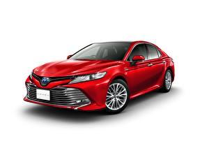 Bilder Toyota Rot Weißer hintergrund Camry Autos