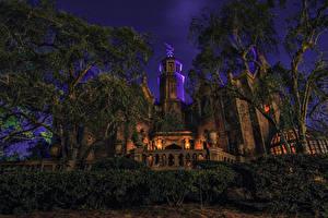 Hintergrundbilder Vereinigte Staaten Disneyland Park Gebäude Kalifornien Anaheim Design Strauch Bäume Nacht Städte