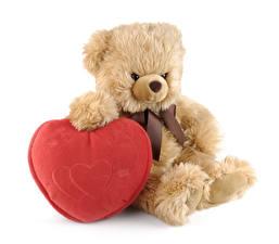 Fotos Valentinstag Knuddelbär Weißer hintergrund Herz