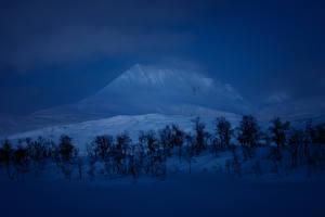 Fotos Winter Gebirge Schnee Bäume Nacht Natur