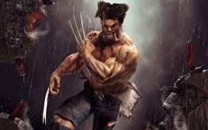 Fotos Wolverine Held Krieger Krallen Fan ART Fantasy