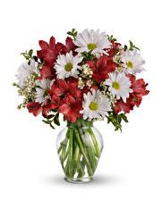 Picture Bouquet Mums Alstroemeria White background Vase flower