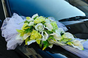 Pictures Bouquet Rose Marsh wild calla Marriage flower