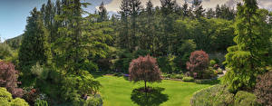 Pictures Canada Park Trees Shrubs Lawn Spruce Butchart Gardens Nature