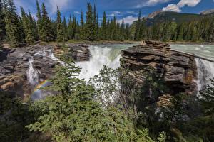 Bureaubladachtergronden Canada Watervallen klif landform Spar sparren Regenboog Alberta