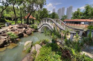Sfondi desktop Cina Hong Kong Parco Stagno Ponti Pietre Chi Lin Nunnery Natura