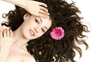 Fotos Gerbera Weißer hintergrund Braunhaarige Haar Hand Gesicht Mädchens