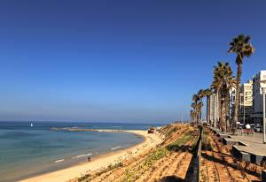 Hintergrundbilder Israel Gebäude Küste Palmen Bat Yam