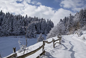 Wallpapers Italy Winter Forests Roads Snow Spruce Fence Alta Badia Nature