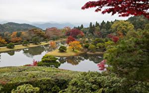 デスクトップの壁紙、、日本、京都市、公園、池、低木、木、Shugakuin Imperial Villa、自然