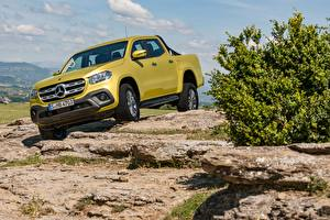 Bilder Mercedes-Benz Gelb Pick-up Gold Farbe 2017-18 X-Klasse Progressive Worldwide