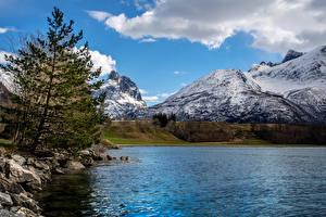 Fotos Norwegen See Berg Steine Fichten Schnee Andalsnes Natur