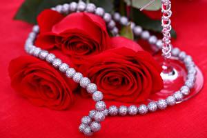 Bilder Rose Schmuck Perlen Roter Hintergrund Drei 3 Rot Blumen