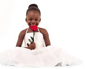Bilder Rosen Weißer hintergrund Kleine Mädchen Glücklicher Kleid Neger Kinder