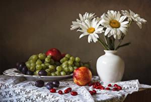 Bilder Stillleben Kamillen Weintraube Äpfel Pflaume Vase Lebensmittel