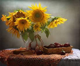 Fotos Stillleben Sonnenblumen Pflaume Vase Tisch Blumen