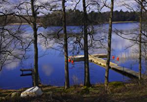 Fotos Schweden Flusse Schiffsanleger Boot Bäume Rimforsa Natur
