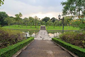 Sfondi desktop Thailandia Bangkok Parco Stagno Scala Cespugli Natura