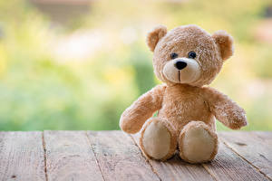 Fotos Spielzeuge Teddybär Bretter Sitzt