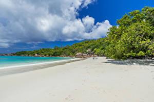 Bilder Tropen Küste Strände Natur