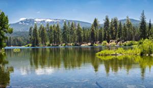Bilder Vereinigte Staaten Park See Bäume Lassen National Park Natur