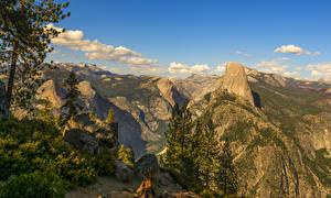 Fotos Vereinigte Staaten Park Gebirge Steine Yosemite Fichten